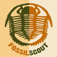 Fossilscout